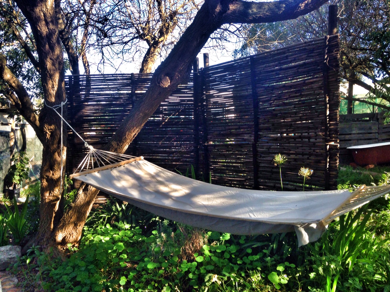 Hammock in the garden to hang out