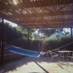 Garden Hammock on the Deck