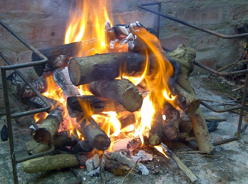 Barbeque fire with invasive specie