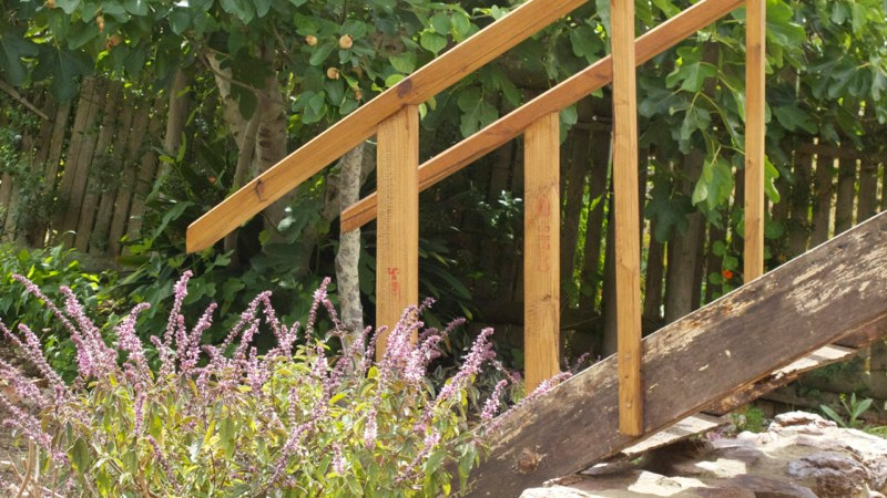 Lavender and wooden staircase