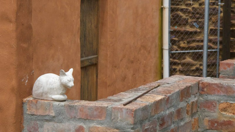 White stone cat waiting patiently