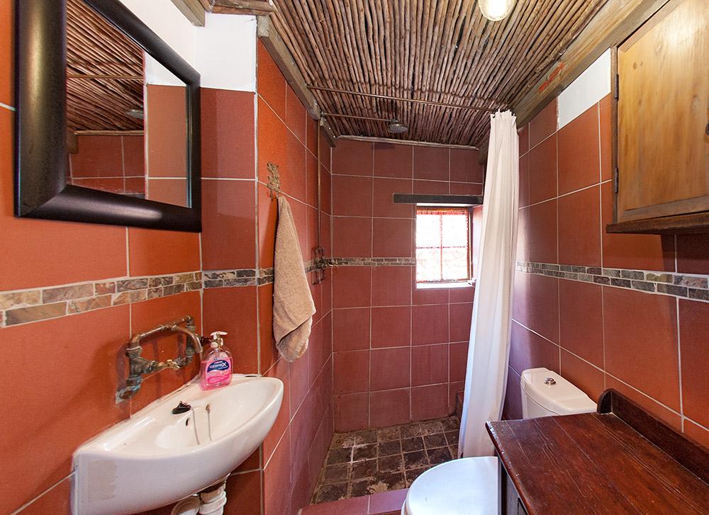 Downstairs Guest Suite Bathroom